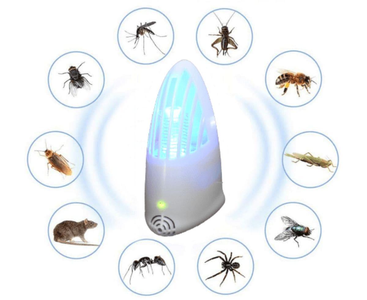 Come liberarsi dagli insetti in casa con la lampada fulmina insetti Invictus